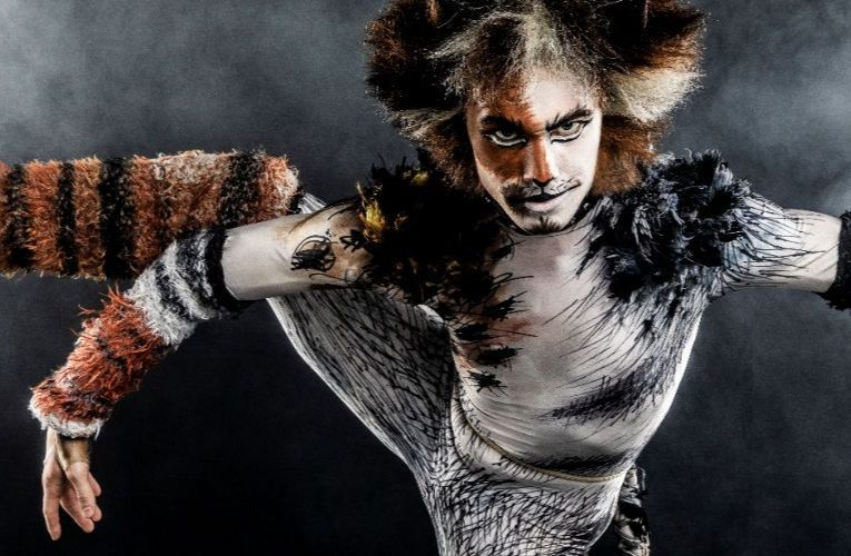 More Info for CATS - Broadway in Boise 2021/2022